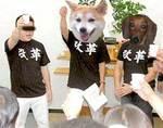 kaikaku1