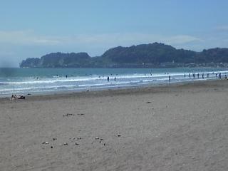由比ヶ浜に行って。