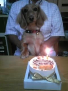 1歳のお誕生日だよ♪